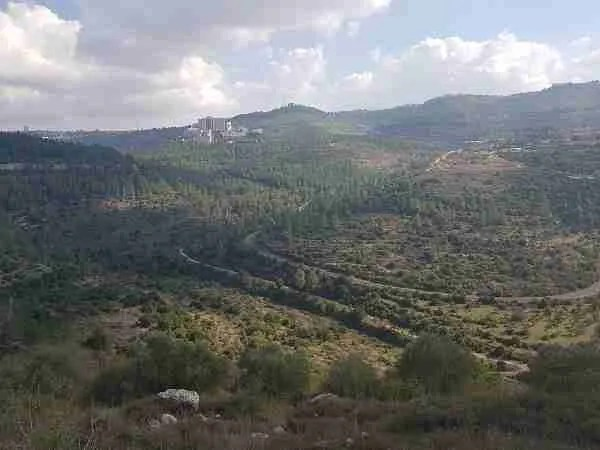 View of the Haddasah Ein Karem Hospital from Sattaf