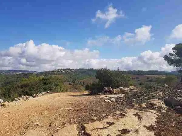 More views on the way to Beit Meir on the Israel National Trail