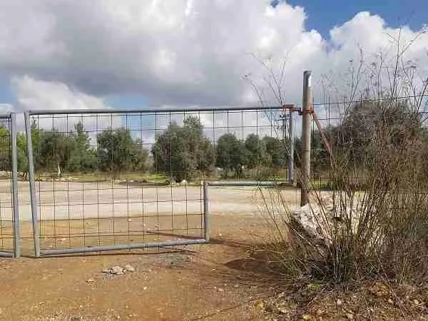 Small opening on the Israel National Trail