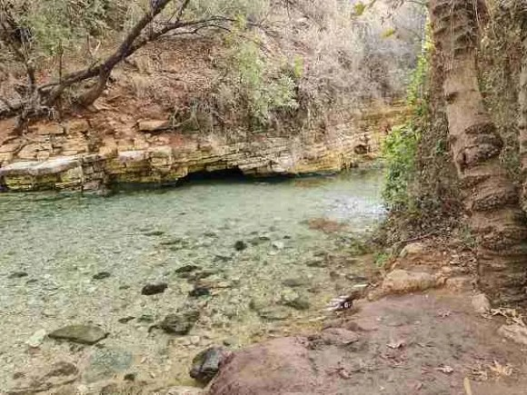 A water spring in Nahal Kziv on the Sea to Sea Trail