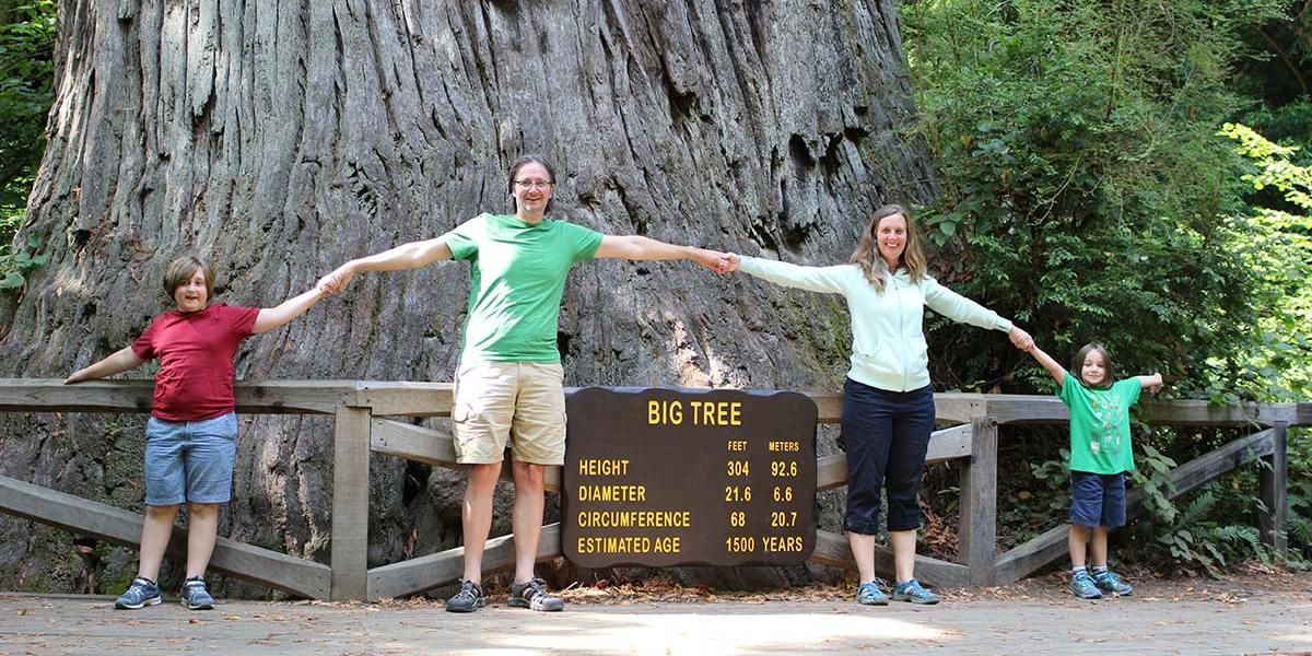 ca-bigtree