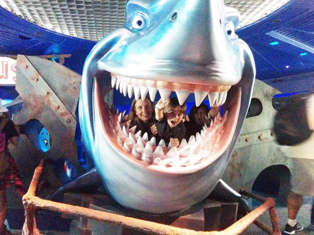 DW-Shark