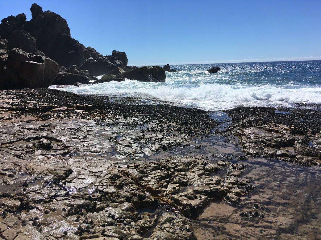 agnes water coast