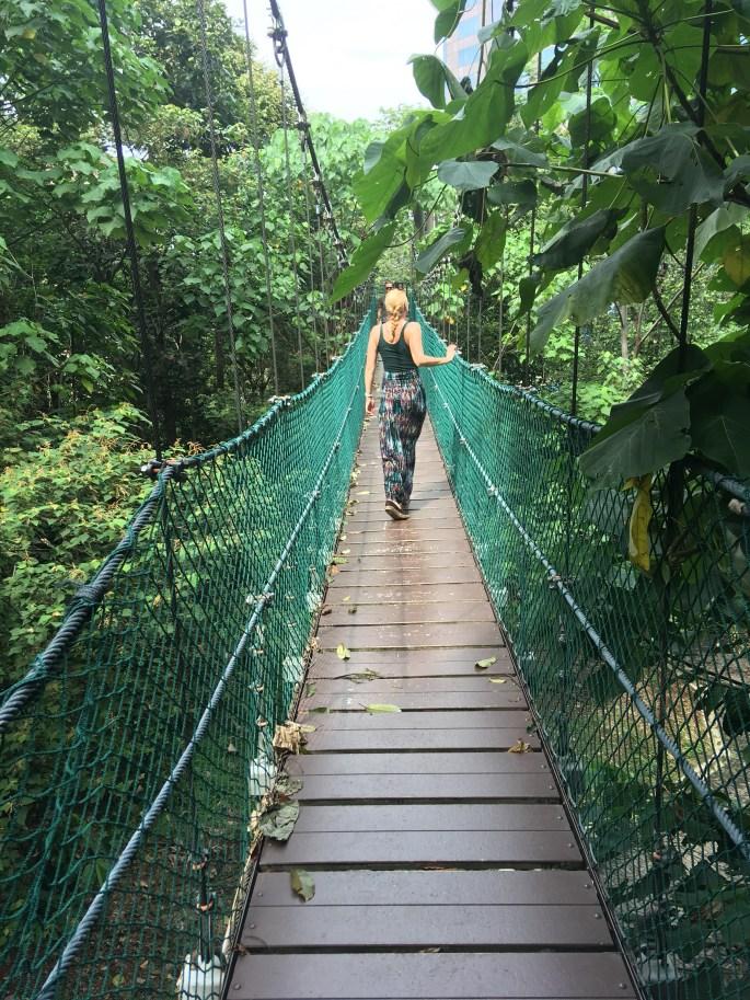 Backpacking in Malaysia Kuala Lumpur Canopy Walk