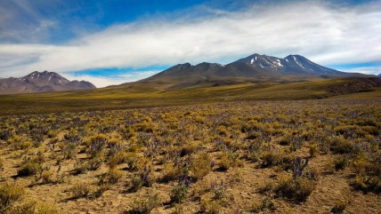 things to do in San Pedro de Atacama