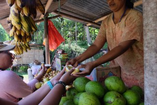Buah-buahan lokal Flores