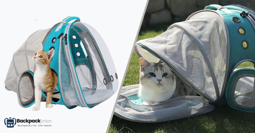 Expandable-Front-Best-Cat-Backpack-For-Hiking