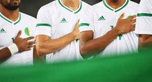 Exploring the green and white of Les Bleus