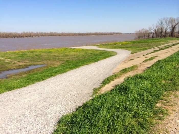 Mississippi River Levee