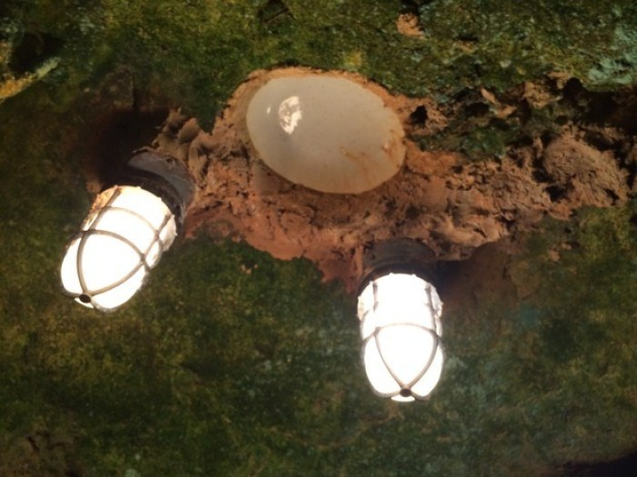 World War I Surplus Reflecting Dishes at Florida Caverns