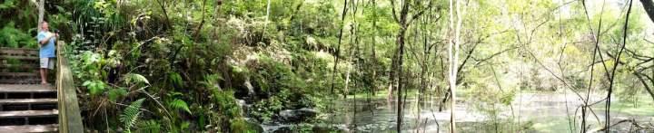 Devil's Millhopper Flooded Florida
