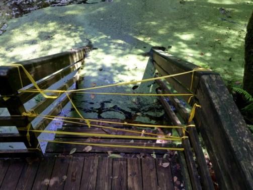 Devil's Millhopper Deck