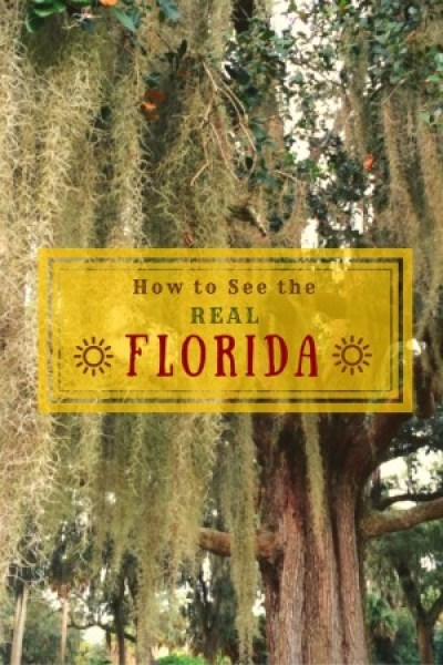 Eleven authoritative web sites run by locals to help you plan a road trip or travel itinerary to see the REAL Florida.