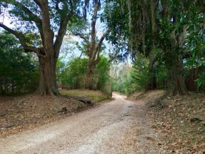 IMG 1378 - Visit Historical Natchez, Mississippi