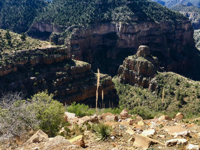 Salt River Canyon Arizona