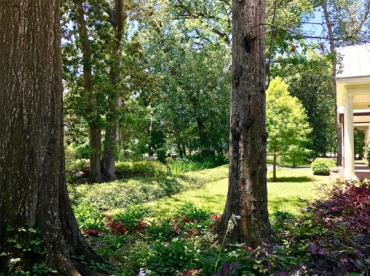 IMG 5314 - Explore Ascension Parish, Louisiana