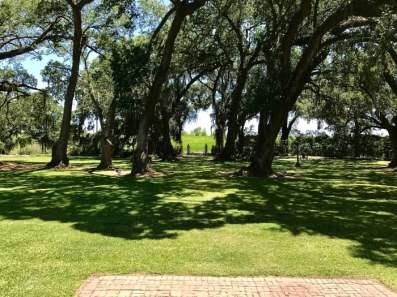 IMG 5327 - Explore Ascension Parish, Louisiana