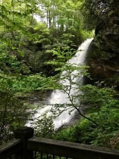 IMG 5598 - Franklin, North Carolina: A Smoky Mountain Adventure