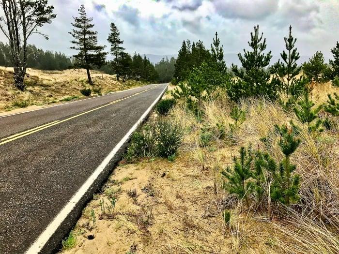 IMG 3489 - Tillamook: A Drive Along the North Oregon Pacific Coast