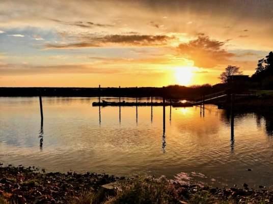 IMG 3537 - Tillamook: A Drive Along the North Oregon Pacific Coast