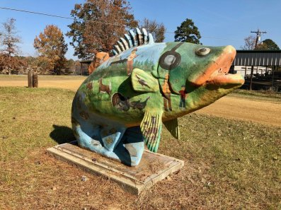 IMG 9994 - Discover Outdoor Adventure at Toledo Bend Lake & Sabine Parish, Louisiana