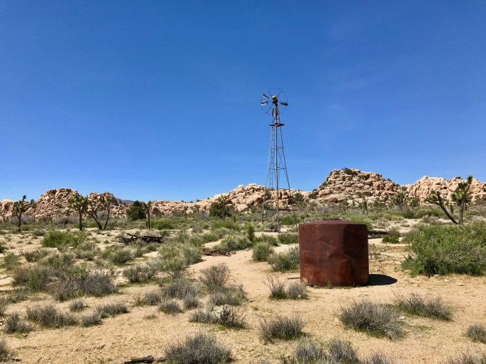 IMG 2507 - Best Hikes in Joshua Tree National Park on a One-Day Trip