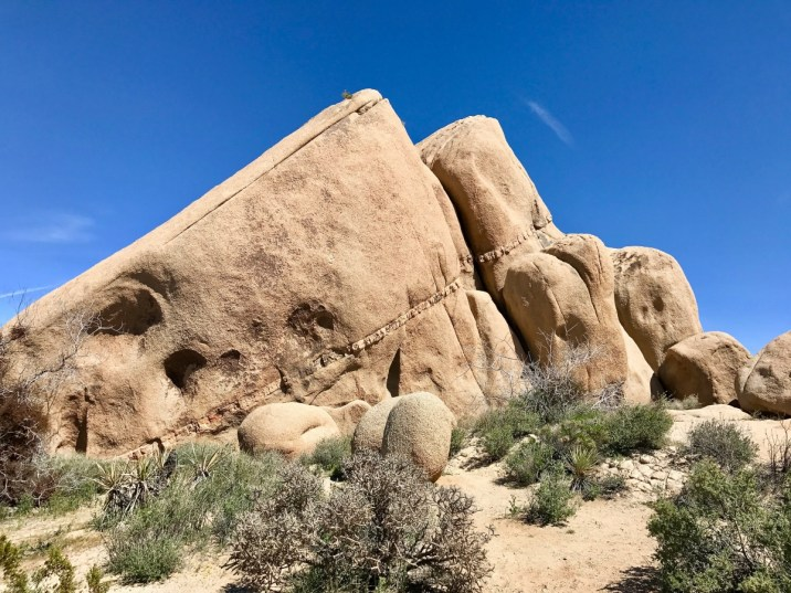 IMG 2543 - Best Hikes in Joshua Tree National Park on a One-Day Trip