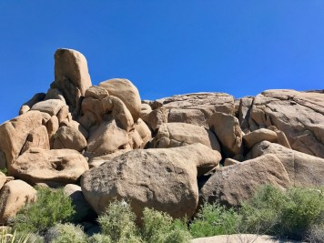 IMG 2555 - Best Hikes in Joshua Tree National Park on a One-Day Trip