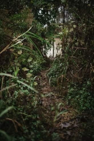 MississippiDeltaEmmettTill BackroadPlanet AshleighColeman 81 - Searching for Emmett Till: A Mississippi Delta Pilgrimage