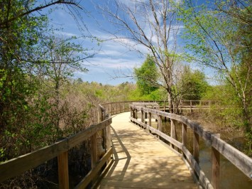 ouachita a - 14 Top Attractions in Hot Springs, Arkansas