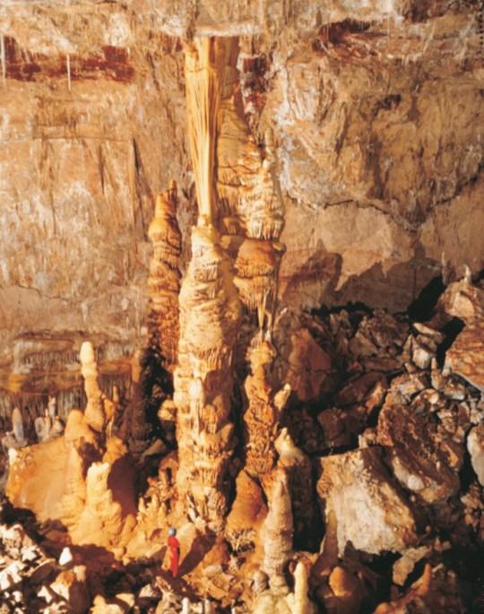 Kartchner Caverns Kubla Khan credit AZ State Parks