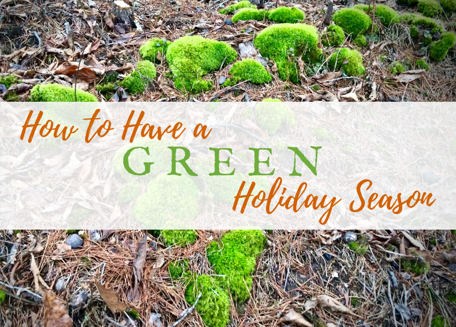 How to Have a Green Holiday Season this Year