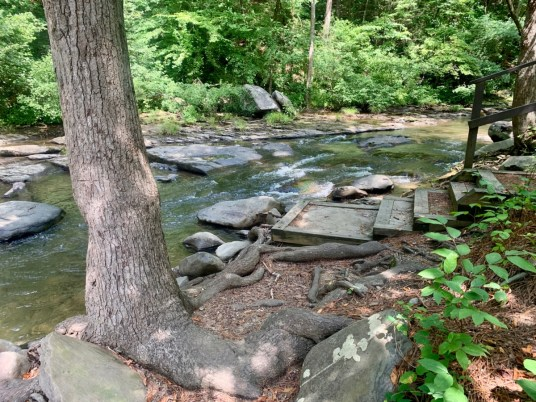 Holly Creek