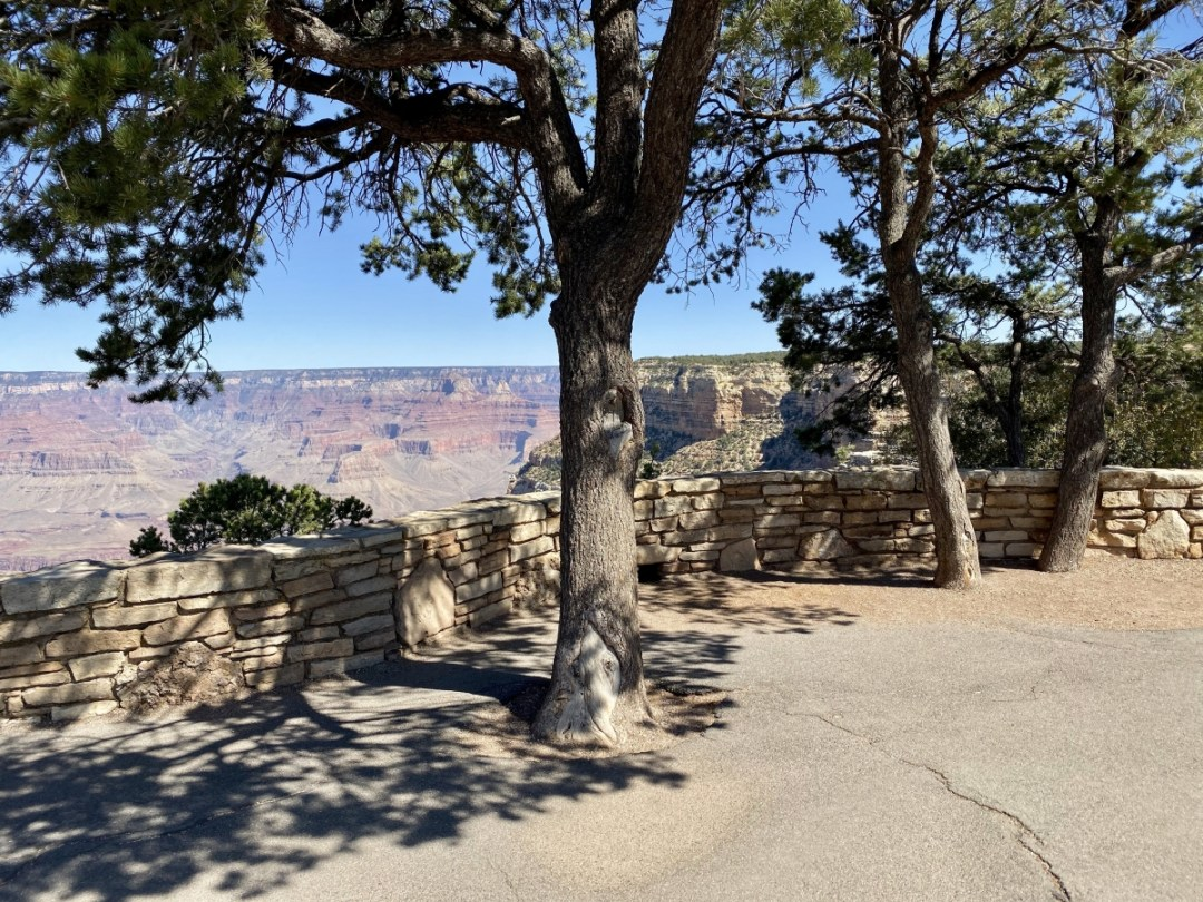 Grand Canyon shade - Take the Train to Grand Canyon National Park: An Insider's Guide