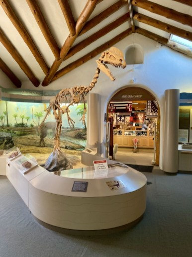 Museum of Northern Arizona dinosaur - Tour Flagstaff Attractions On Your Own