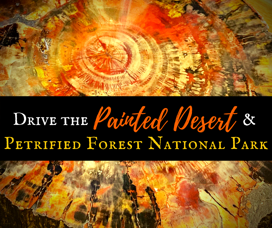 Drive the Painted Desert & Petrified Forest National Park