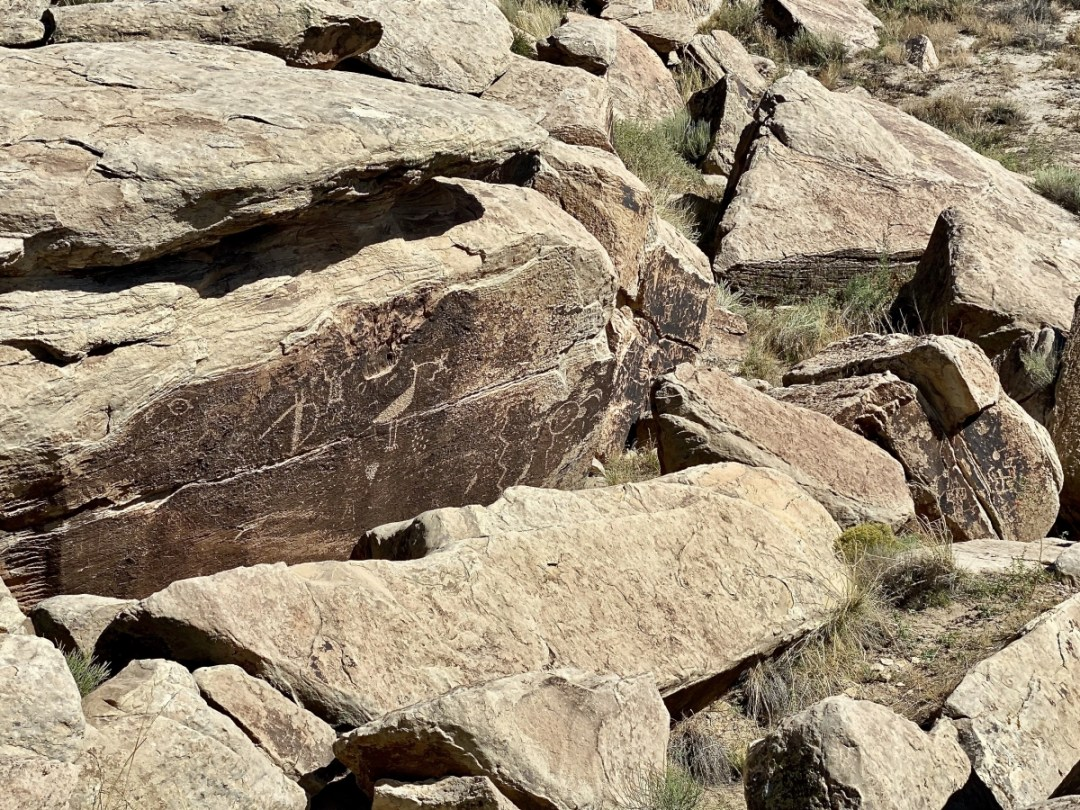 Puerco Pueblo petroglyphs - Drive the Painted Desert & Petrified Forest National Park