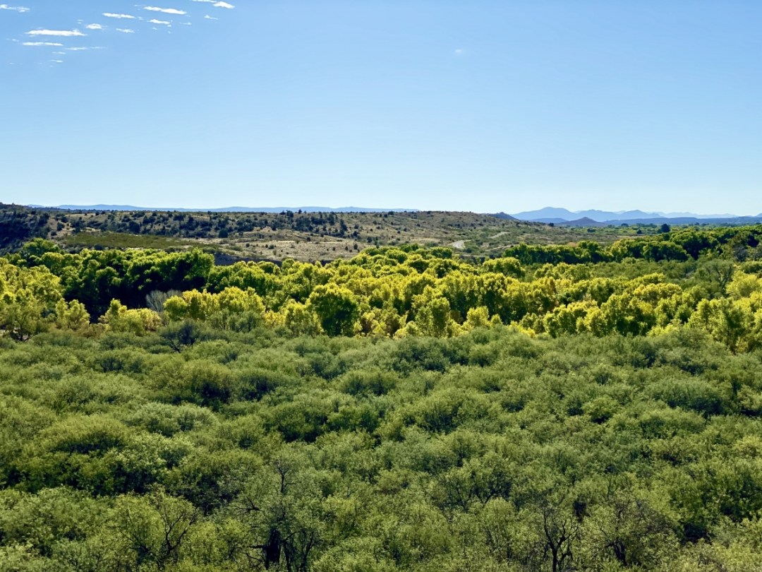 Verde River from Tuzigoot National Monument - 7+ Amazing Attractions in Verde Valley AZ