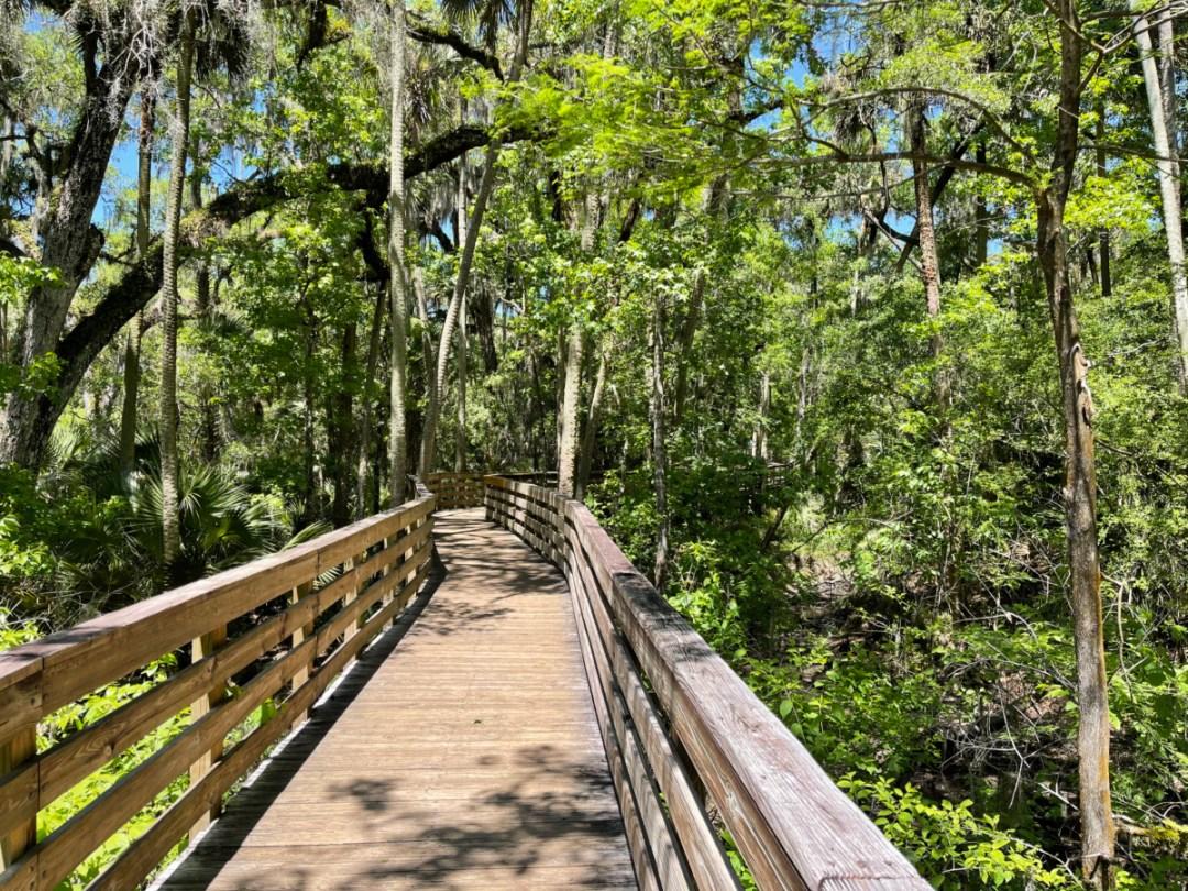 Blue Spring boardwalk - Discover Florida's Blue Spring State Park & Campground
