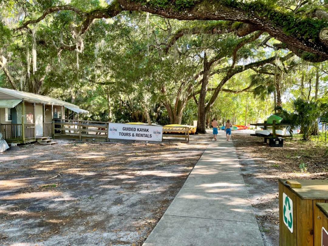 Blue Spring kayak tours and rentals - Discover Florida's Blue Spring State Park & Campground