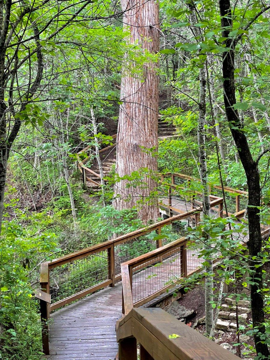 McKinney Falls Old Baldy - Plan an Unforgettable McKinney Falls State Park Camping Trip