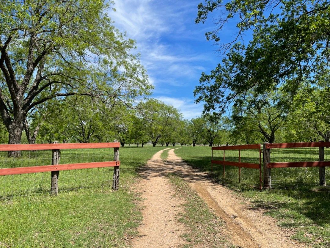 LBJ Ranch dirt road - Explore LBJ Ranch and the Texas Hill Country