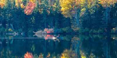 There's still time to sleep under the stars before the snow flies. Here's some of the best fall camping in New England. P.S. there's cabins if you don't like the cold.