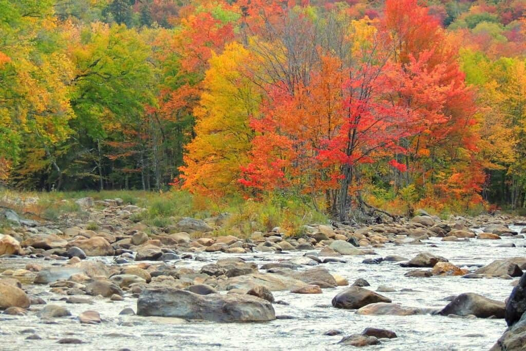 Fall colors along the Deerfield River in Wilmington