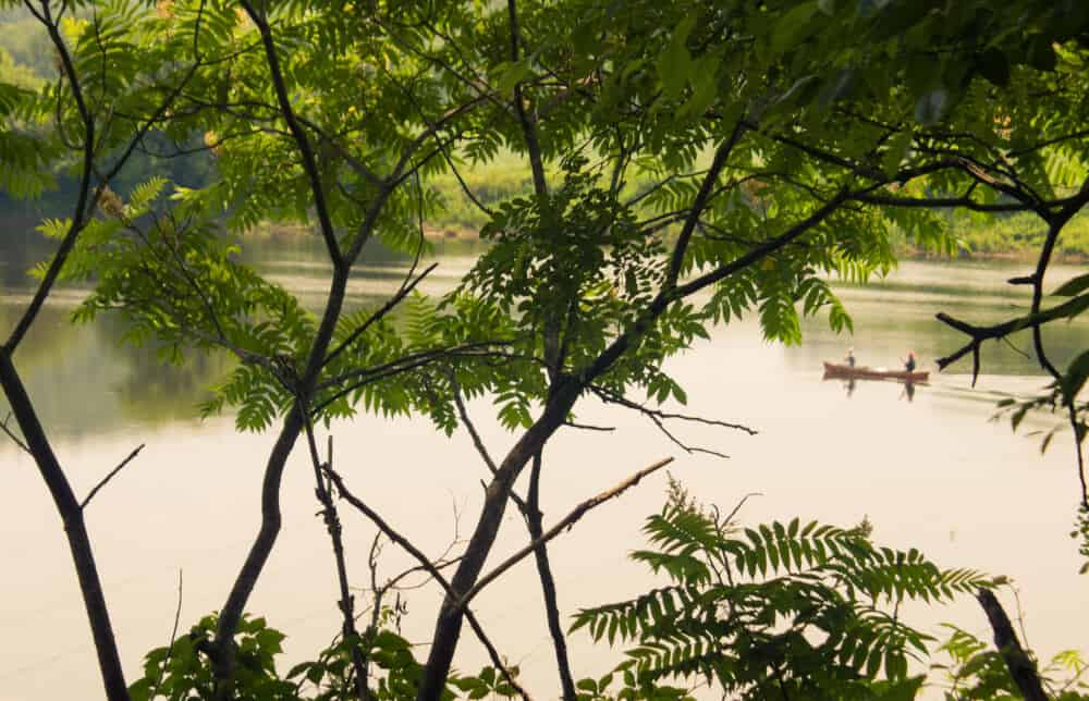 A distant view through the trees of a canoe on the Connecticut River.