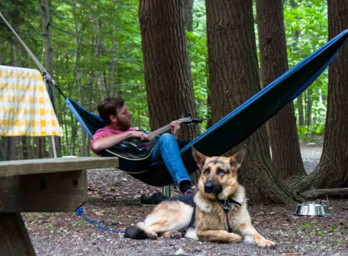 A man plays a guitar in a hammock, net to a German shepherd in Emerald Lake State Park