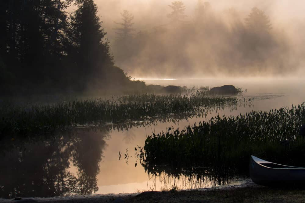 Sunrise and fog at Ricker Pond State Park