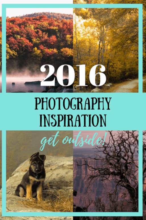 What inspires you to get out there and do what you love? For me it's as simple as getting outside. Here are my best photos from 2016.