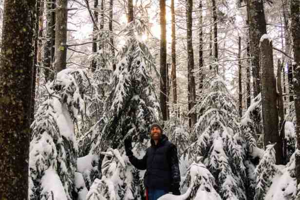 Did you know that most national forests allow you to choose and cut your own wild Christmas tree for $5? Here's what you need to know about scoring your own national forest Christmas tree.
