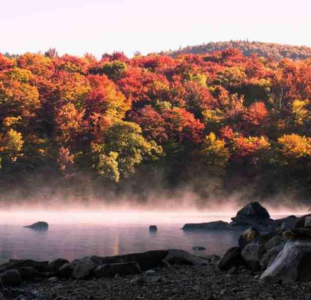Autumn Photo Inspiration